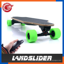 Portable Cruise Control Electric Skateboard